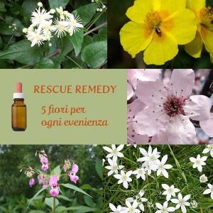 Rescue Remedy 5 fiori di bach